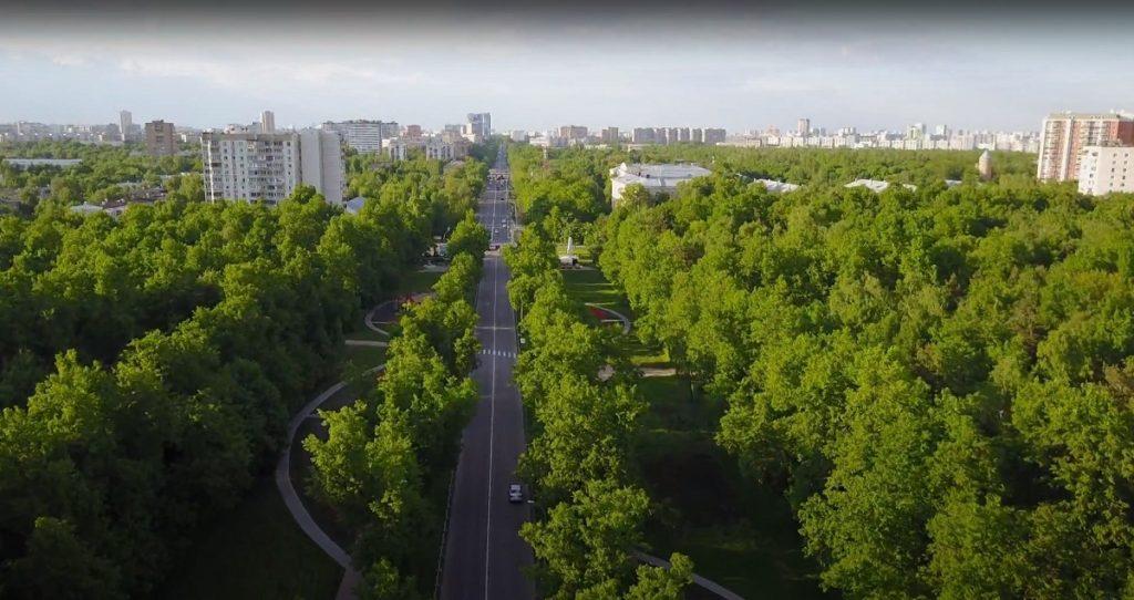 park v rajone kuzminki 1024x542 - Район Кузьминки ЮВАО: описание, недвижимость, достоинства и недостатки